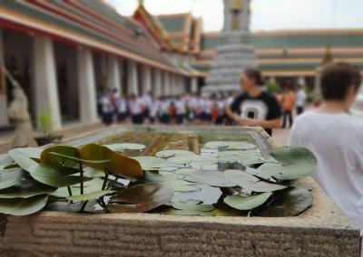Teich im Wat Pho