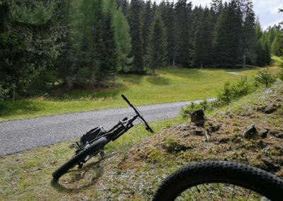 E-Bikes liegen im Grass